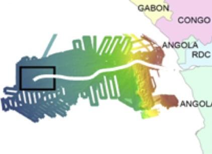 Les Lobes du Congo : un immense dépôt de matière organique qui abrite des écosystèmes très spéciaux