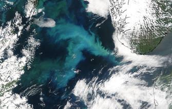 El Nino aide à prédire l'avenir du phytoplancton