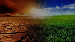 IPCC special report, known as SRCCL (Special Report Climate Change and Land)