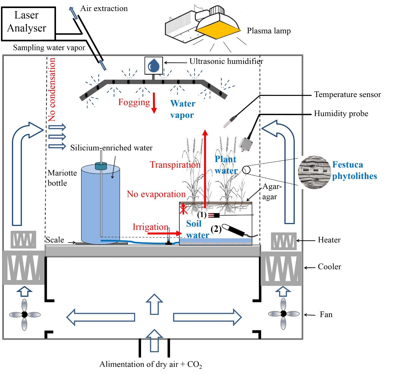 Signature en 17o excess de la silice des plantes vers - Comment installer un extracteur dans une chambre de culture ...