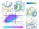 Vers une Physique Statistique des  Événements Extrêmes Climatiques