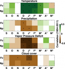 Improvement of isotope-based climate reconstructions in Patagonia through a better understanding of climate influences on isotopic fractionation in tree rings