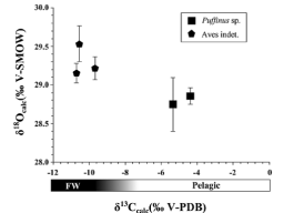 Oxygen isotope fractionation between bird eggshell calcite and body water: application to fossil eggs from Lanzarote (Canary Islands)