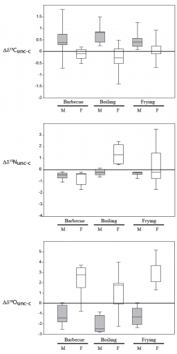 Carbon, nitrogen and oxygen isotope fractionation during food cooking: implications for the interpretation of the fossil human record