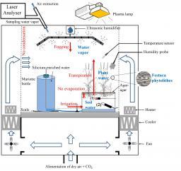 « Signature en 17O-excess de la silice des plantes : vers un nouvel indicateur de l'humidité atmosphérique ». Projet soutenu par LEFE/IMAGO 2016.