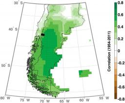 Are the oxygen isotopic composition of Fitzroya cupressoides and Nothofagus pumilio cellulose promising proxies for climate reconstructions in northern Patagonia